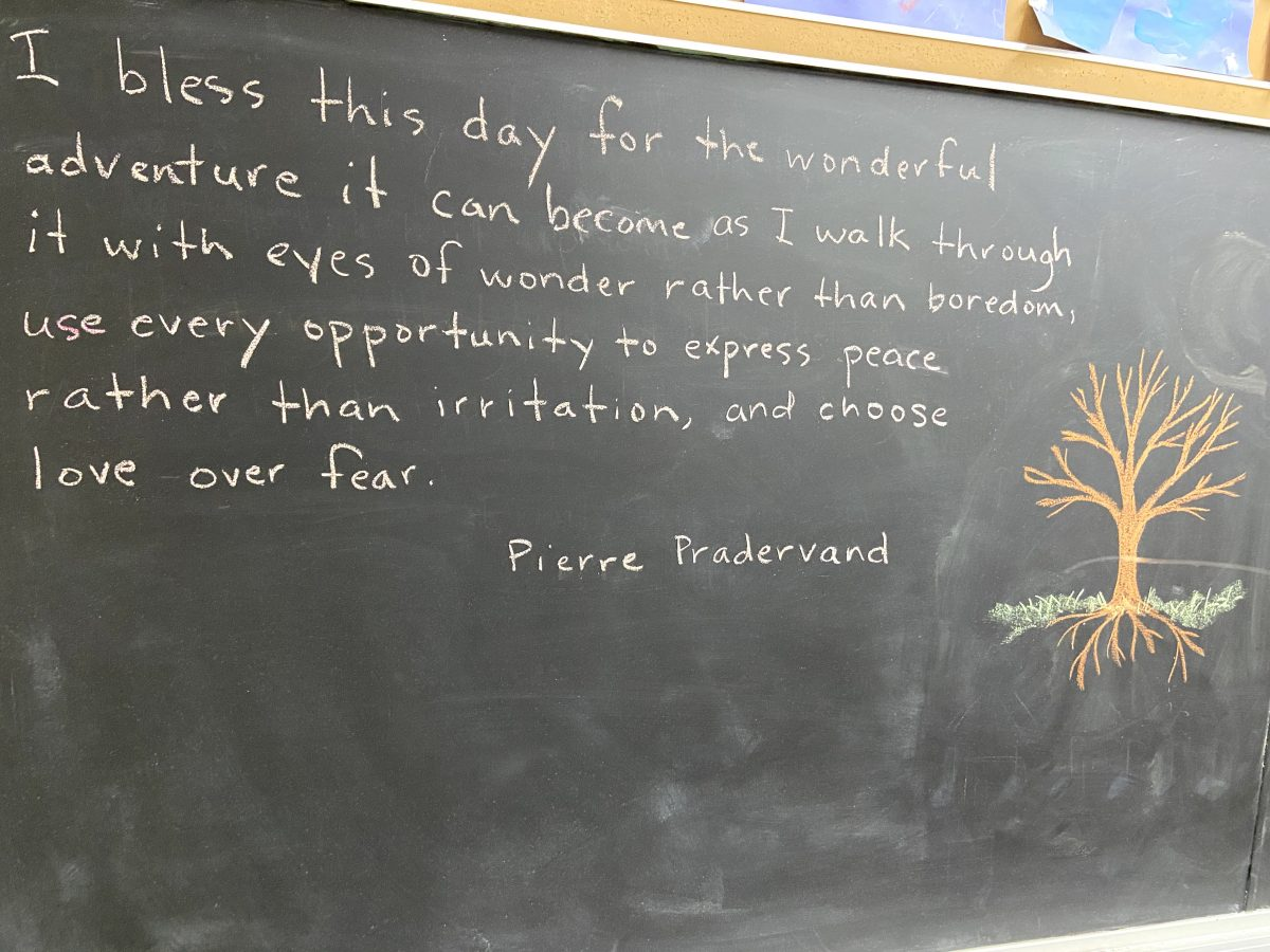 "quote written on a chalkboard, ""I bless this day for the wonderful adventure it can become as I walk through it with eyes of wonder rather than boredom, use every opportunity to express peace rather than irritation, and choose love over fear."" Pierre Pradervand. There is a drawing of a tree next to the quote with branches and roots."