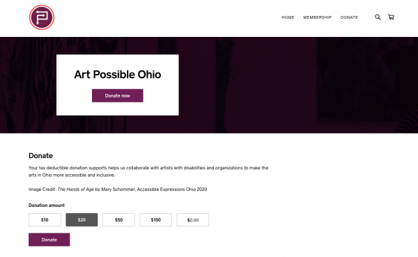 screen shot of Art Possible Ohio home page showing donate button